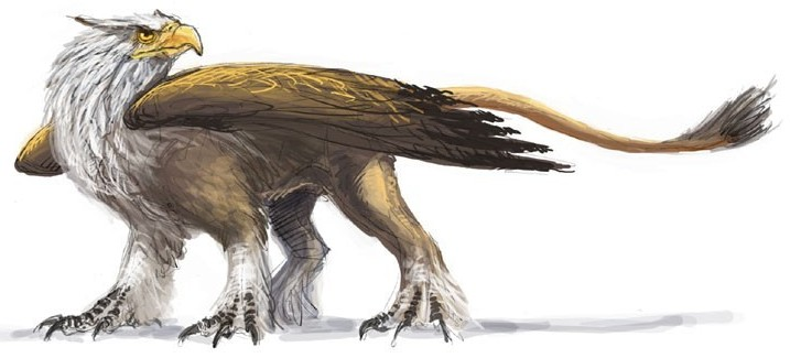 传说中的生物之狮鹫